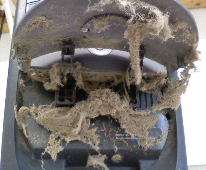 Very Dirty PCs (40 pics)