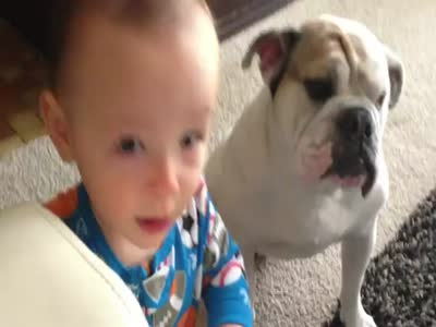 Boy Feeding a Bulldog