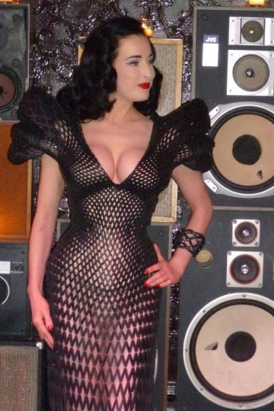 3D Printed Dress of Dita Von Teese (12 pics)