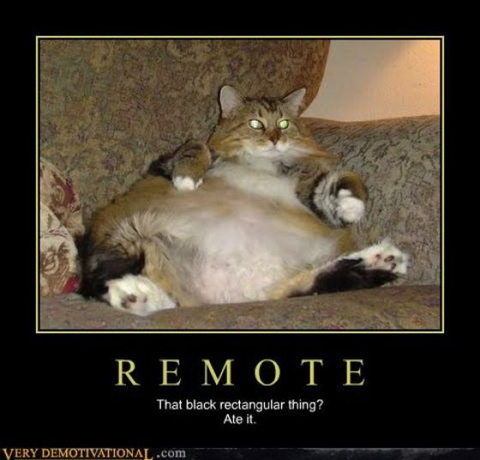 Funny Demotivational Posters (33 pics)