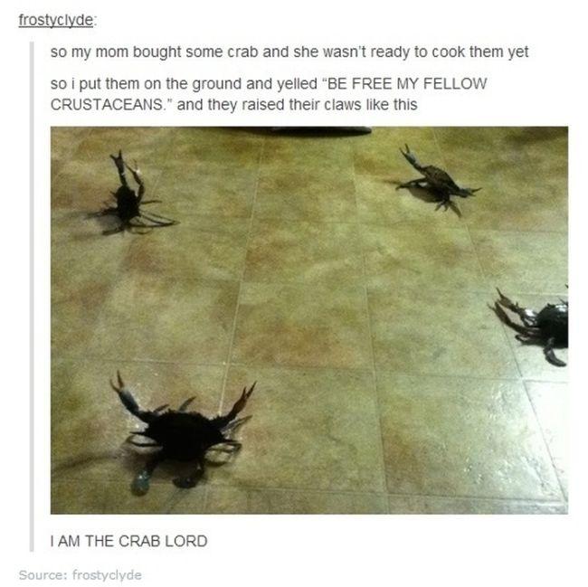 Funny Tumblr Conversations (30 pics)