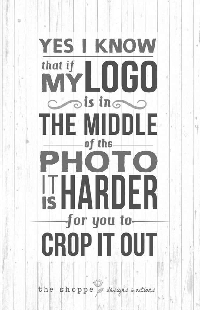 Sarcastic Posters for Photographers (11 pics)