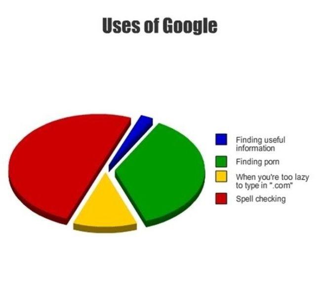College in Pie Charts (19 pics)