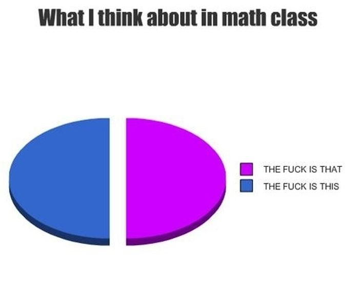 College in Pie Charts (19 pics)