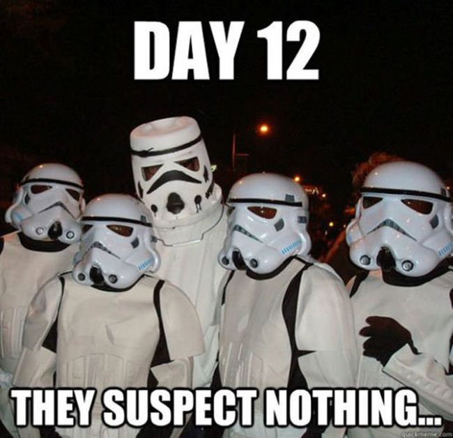 They Suspect Nothing (21 pics)
