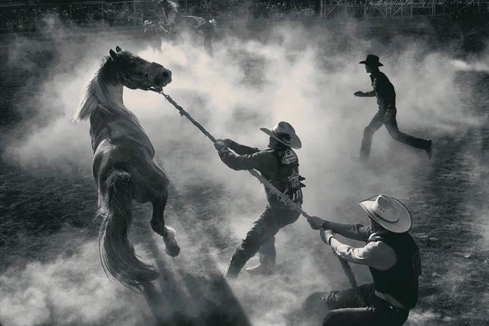 Smithsonian Magazine's Photo Contest Finalists (50 pics)