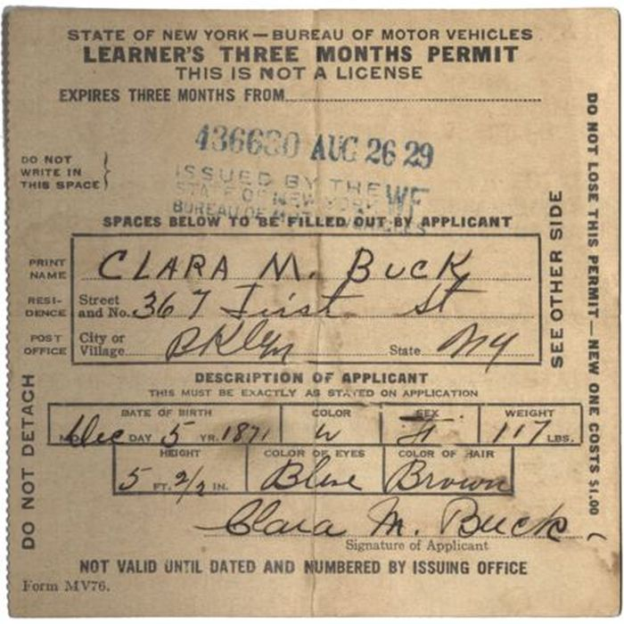 Evolution of the New York Driver's License (40 pics)