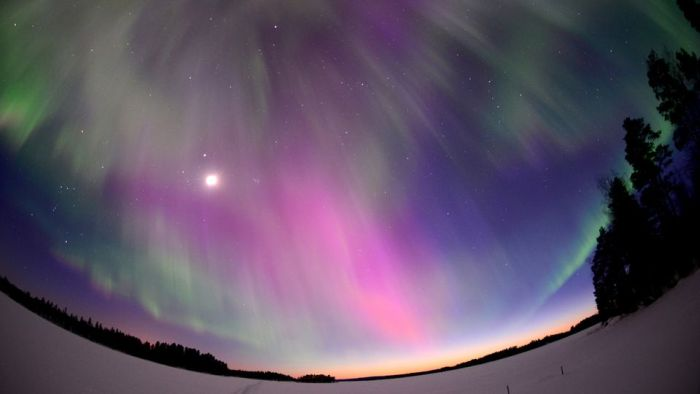 Northern Lights (25 pics)