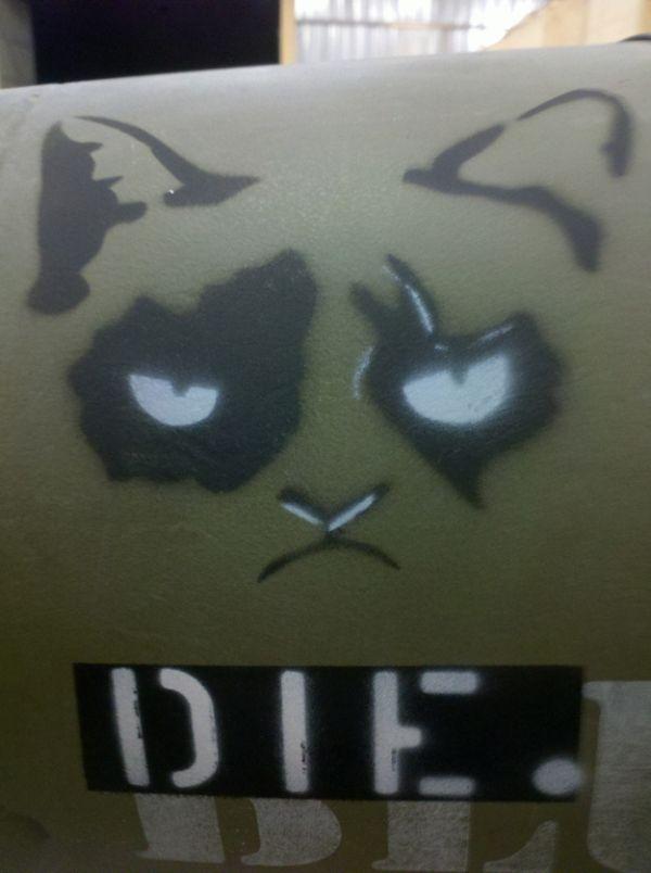 Grumpy Cat On A Bomb (4 pics)