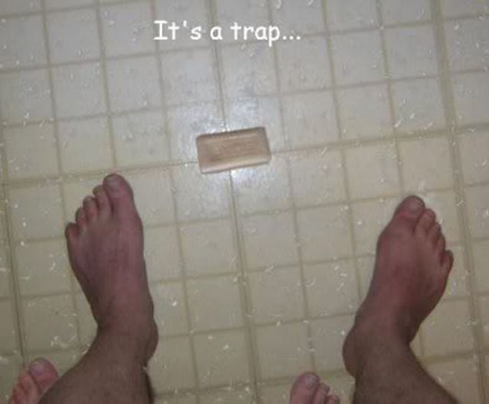 It's a Trap (39 pics)
