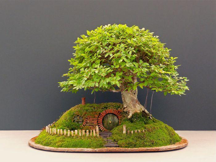 A Bonsai Baggins Hobbit Home (18 pics)