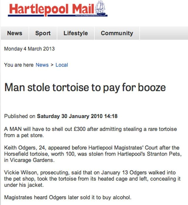 Very Important Local News Headlines (47 pics)