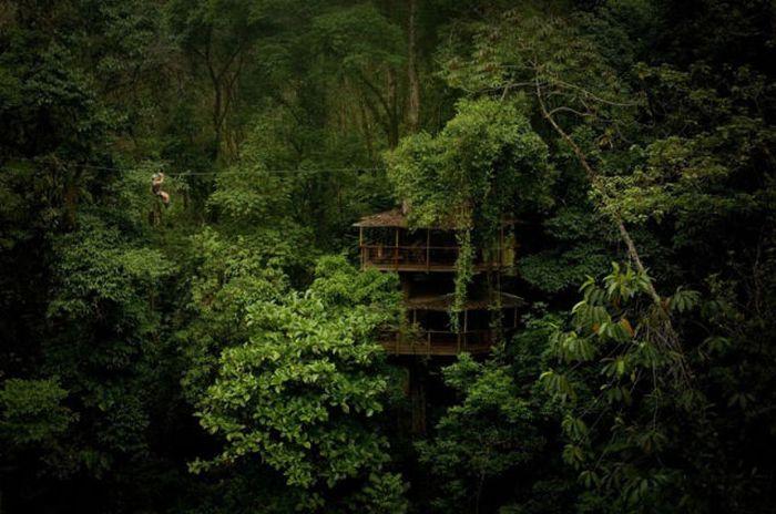 Treehouse Community (21 pics)