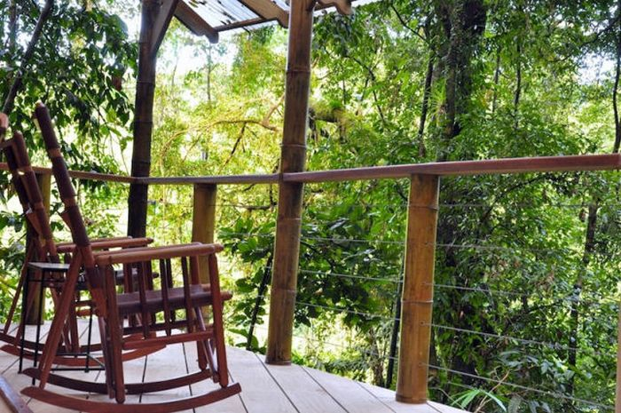 Treehouse Community (21 pics)