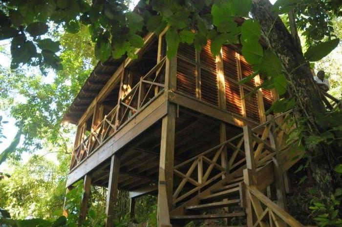 Kanopi House (31 pics)