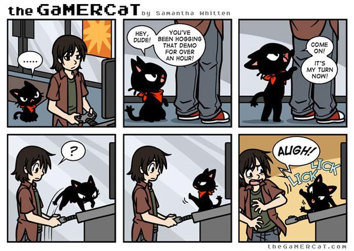 Cat Comics (33 pics)