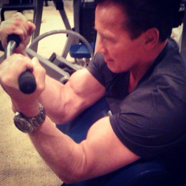 Arnold Schwarzenegger is Back at Gym (3 pics)