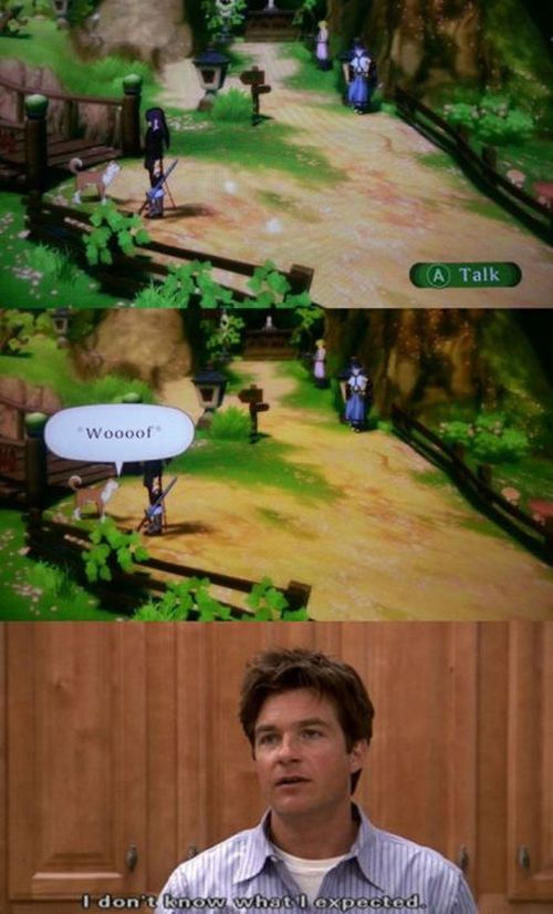 All Video Gamers Can Relate to This (50 pics)