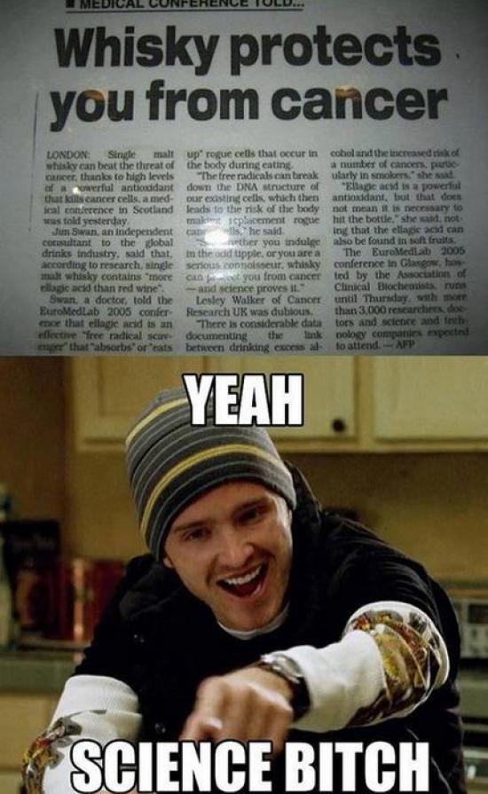 Popular Memes. Part 2 (42 pics)
