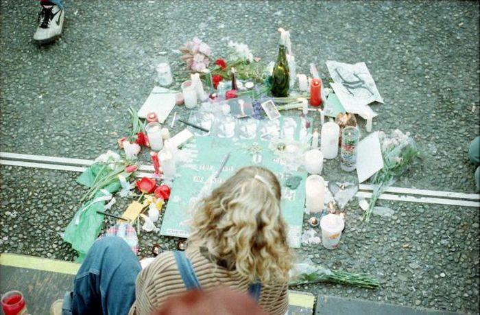 Kurt Cobain Suicide Scene (24 pics)