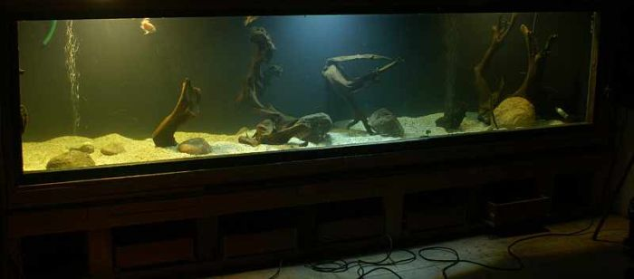 DIY 660 Gallons Aquarium (26 pics)