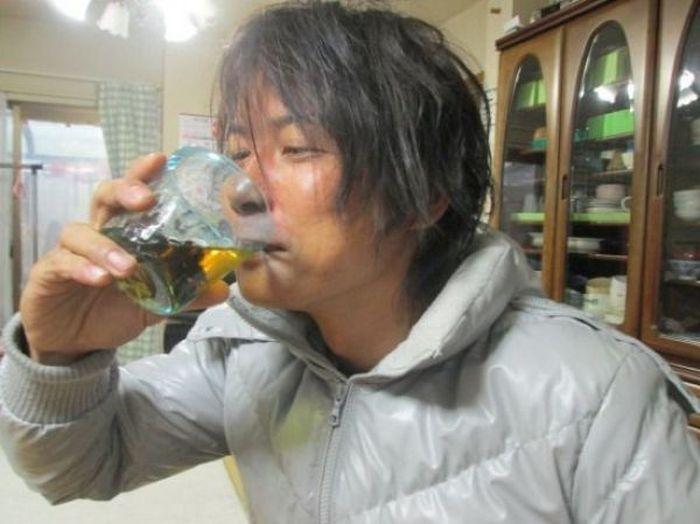 Hornet Vodka (4 pics)