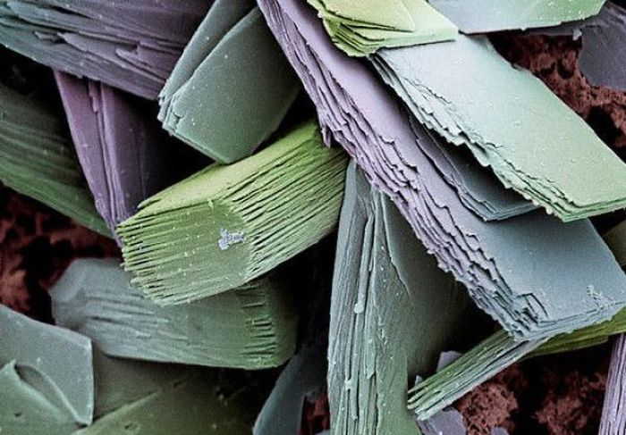 Everyday Items Under A Microscope 27 Pics
