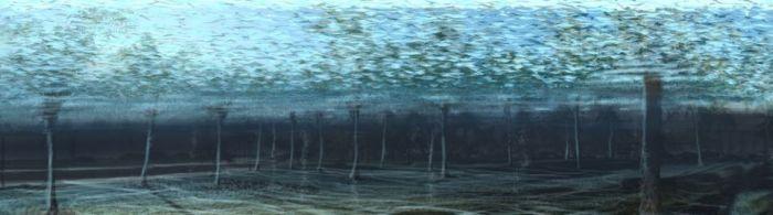 Waterworld (20 pics)