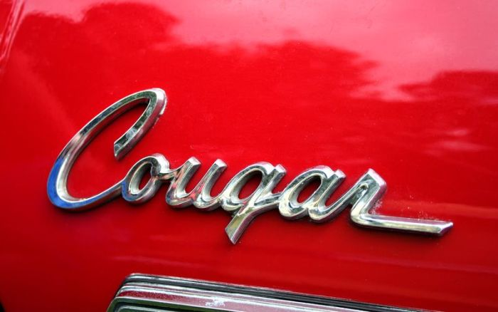 Retro Car Logos (159 pics)