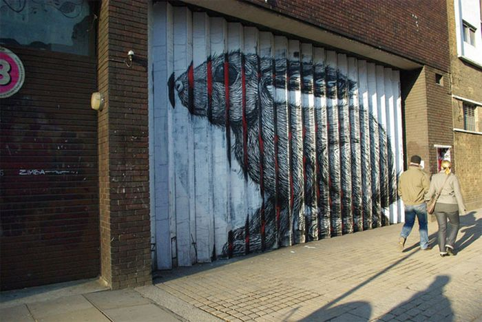 Awesome Street Art by Roa (8 pics)
