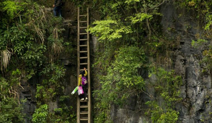Extreme Way to Get to the Classroom (9 pics)