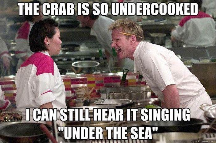 Angry Gordon Ramsay Meme (20 pics)