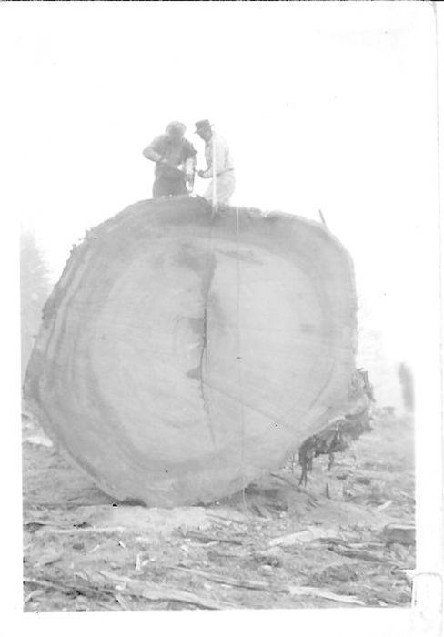 Historical Photos (40 pics)