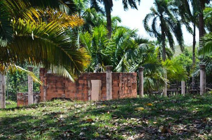 Pablo Escobar's Safari Park (15 pics)