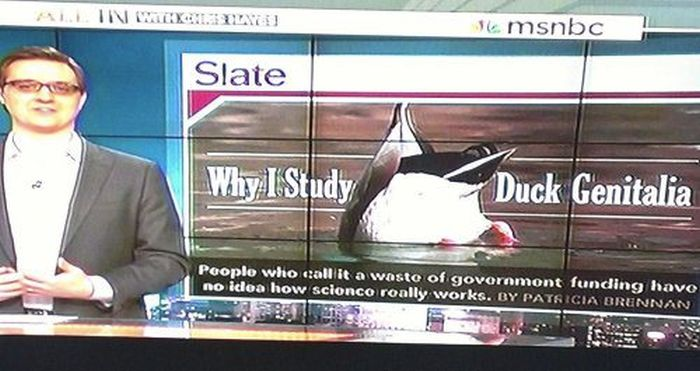 Weird Local News Captions. Part 3 (29 pics)