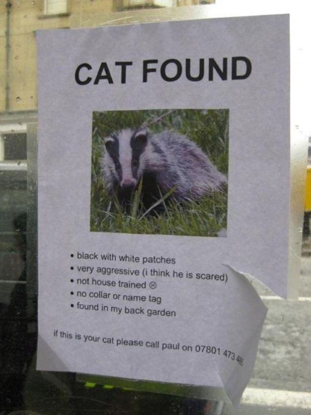 British Humor (37 pics)
