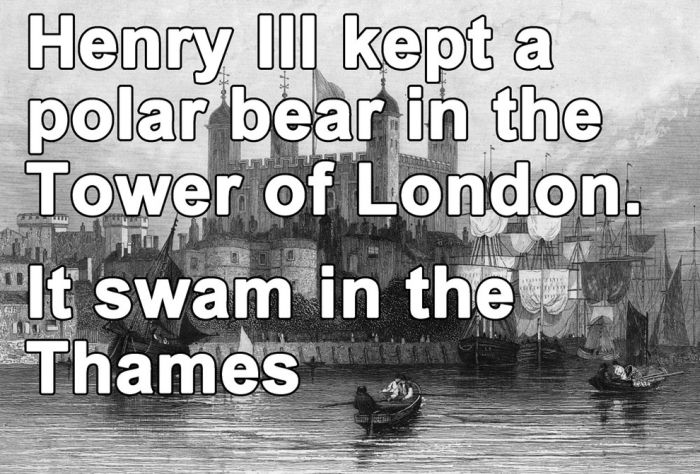 Unbelievable Facts About Britain (19 pics)