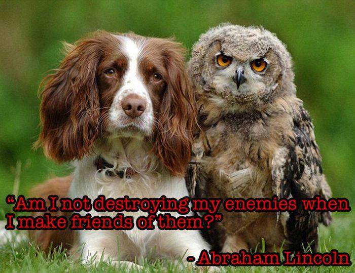 Friendship Quotes (20 pics)
