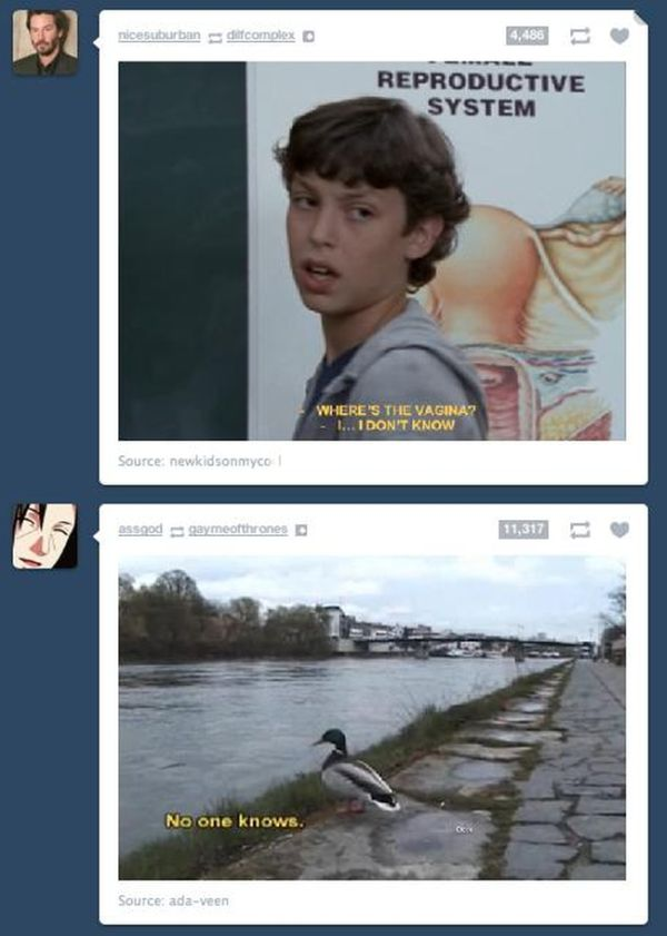 Funny Tumblr Coincidences. Part 2 (20 pics)