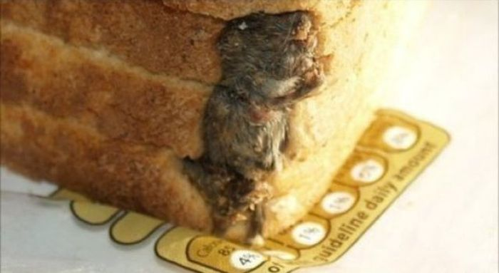 Meals Gone Wrong (22 pics)