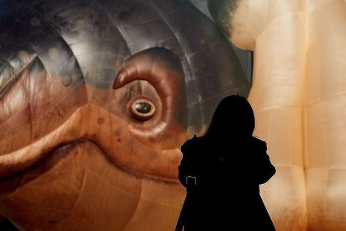 Meet the Skywhale (15 pics)