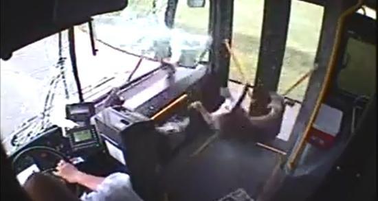 Deer Gets Hit By Bus