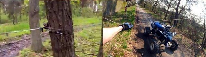 Stupid and Dangerous (2 pics)
