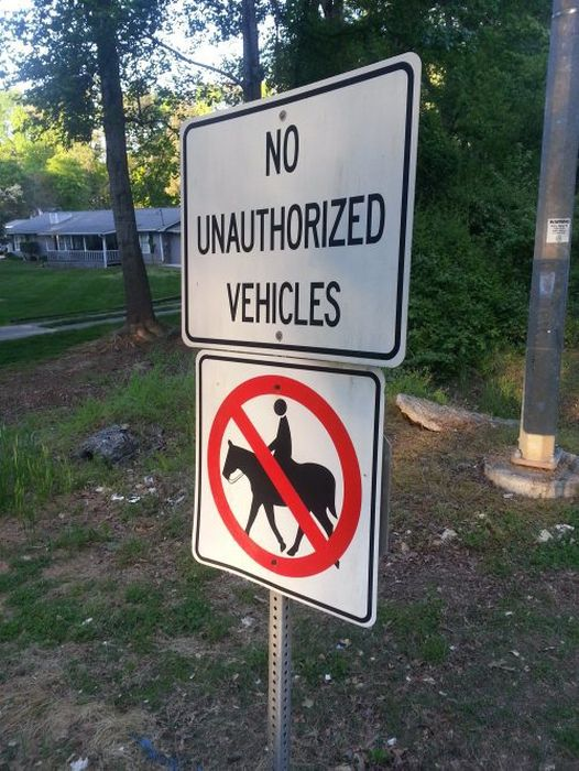 WTF Signs. Part 33 (30 pics)