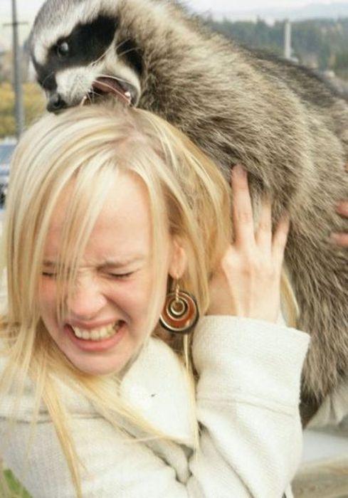 Women vs Animals (35 pics)