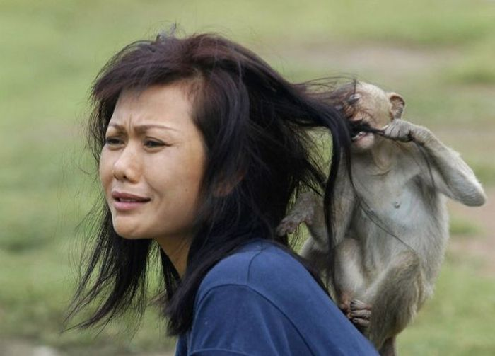 Women vs Animals (35 pics)