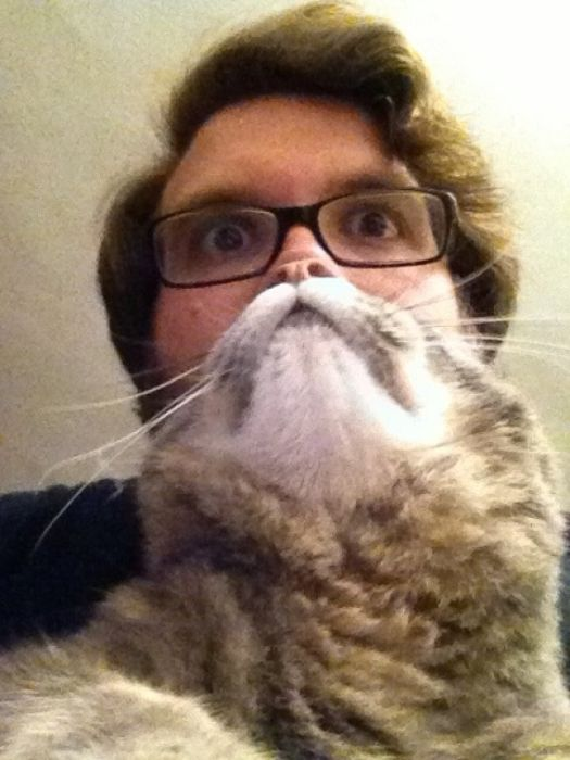 Cat Beards (25 pics)