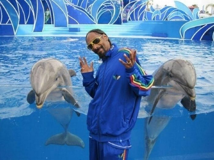 Rappers Doing Normal Sh!t. Part 2 (36 pics)
