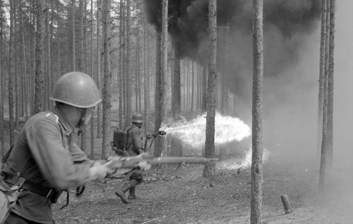 Finland in World War II (49 pics)