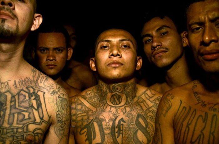 Gangs of El Salvador (20 pics + video)